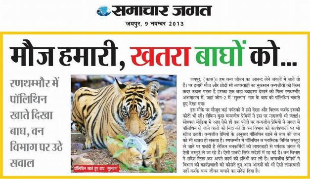 Tiger Trackers